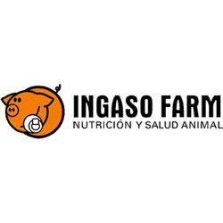 Ingaso